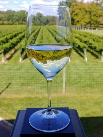Vineyard Tour & Tasting for Two Gift Certificate & Wine