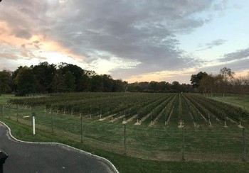 Winery Tour and Wine Tasting 12/13/2019 5:30pm